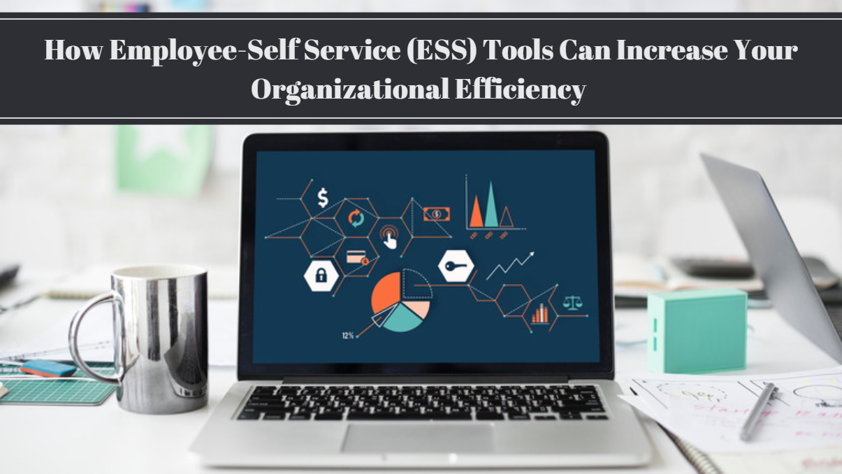 How ESS Tools Can Increase Your Organizational Efficiency | PC Payroll